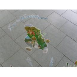 Nappe cirée transparent carte Martinique 472g